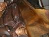 2008-01-15_reparacion_ntra1-_sra-_de_los_dolores-img_2404